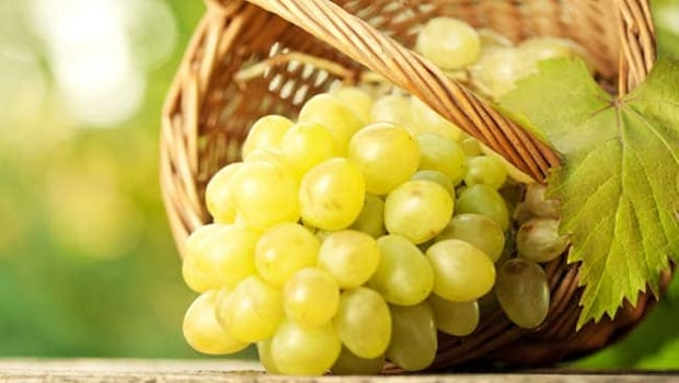 Health Benefits Of Eating Grapes: From Boosting Immunity To Reducing Weight, The Tremendous Benefits Of Eating Grapes