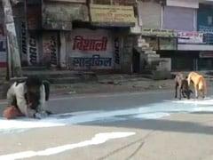 Coronavirus - Man, Dogs Sharing Spilt Milk In Agra Shows Lockdown Desperation