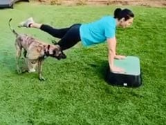 World Health Day 2020: Preity Zinta's Pet Dog Bruno Interrupts Her During Workout Session. Her Reaction