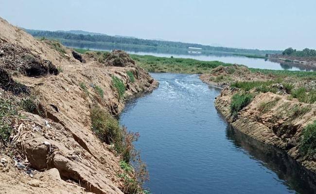 Bengaluru Water Bodies Look Cleaner, 3 Weeks Into Coronavirus Lockdown