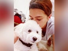 """Arjun Kapoor And Kriti Sanon's """"Paw-Some"""" Moments With Their Pets Are Winning The Internet"""