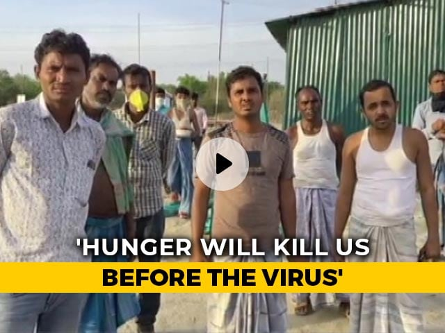 """Video : """"We'll Die Of Hunger Before Virus Can Kill Us"""": Migrant Workers"""