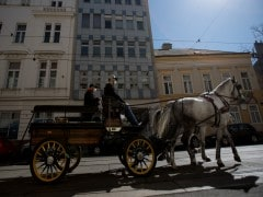 Vienna's Horse-Drawn Carriages Deliver Food To Elderly Amid Coronavirus Pandemic