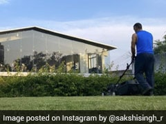 "MS Dhoni Spends ""Lawn Time"" At Home Amidst Coronavirus Lockdown"