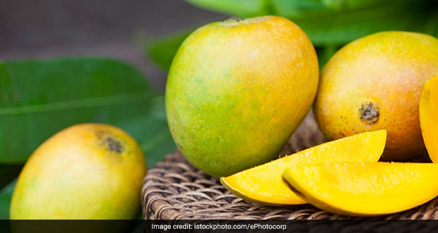 Mango Man! This 84-Year Old Has Preserved Over 150 Rare Mangoes