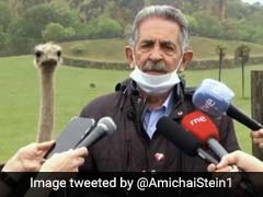 Curious Ostrich Sneaks Into Press Conference Behind Politician. Watch