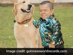 World's Shortest Man Regains Guinness World Record Title After A Decade