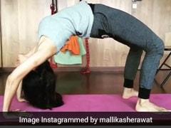 मल्लिका शेरावत ने चक्रासन करते हुए Video किया शेयर, कही यह बात
