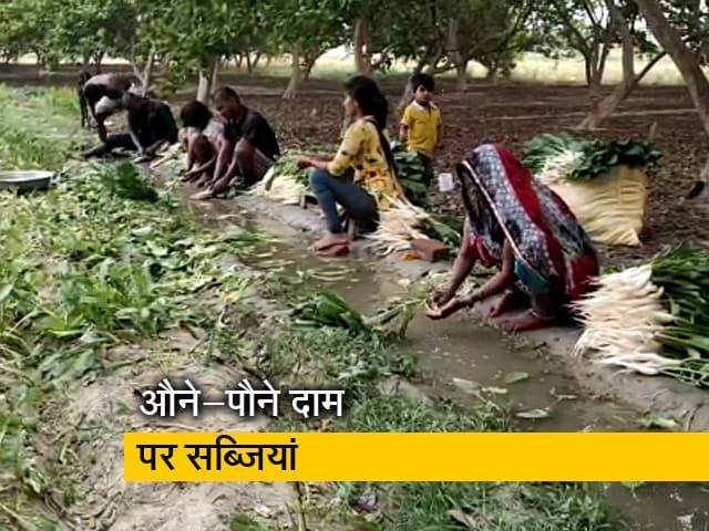 Videos : लॉकडाउन के चलते सब्ज़ी किसानों पर पड़ी मार