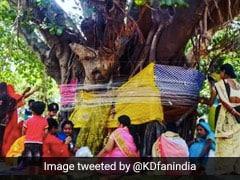 Vat Savitri Vrat 2020: ग्रेसी सिंह और तन्वी डोगरा ने शादीशुदा महिलाओं को दी वट सावित्री पूर्णिमा की शुभकामनाएं