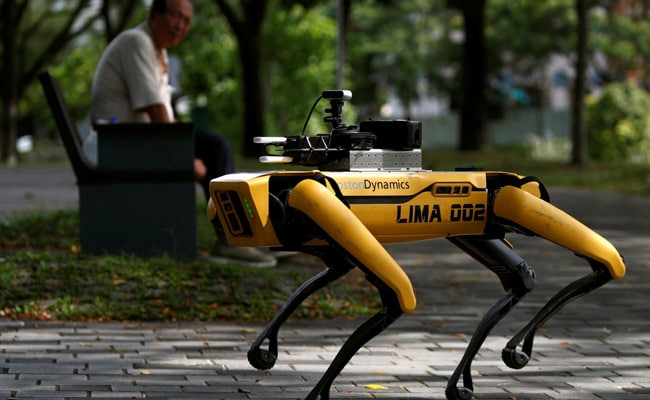 'Let's Keep Singapore Healthy': Roaming Robodog Tells Goers To Stay Apart