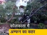 Videos : कोलकाता में अम्फन का कहर, पेड़ गिरने से सैकड़ों गाड़ियां क्षतिग्रस्त