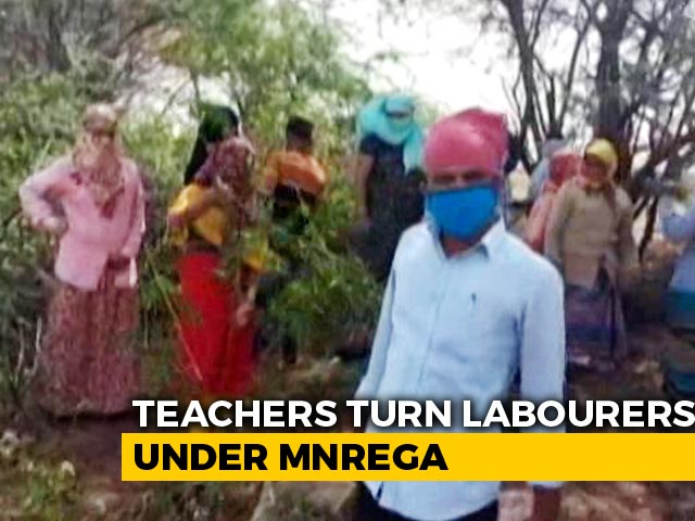 Video : Teachers, Techie Who Made 1 Lakh Turn MGNREGA Labourers Amid Pandemic