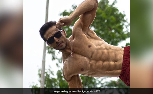 Count The Abs In Tiger Shroff's Shirtless Pic. Ranveer Singh Says It's 'The New Six'