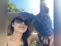 """This Summer, Preity Zinta Is Enjoying """"Pool Days"""" With Pet Dog Bruno. See Pic"""