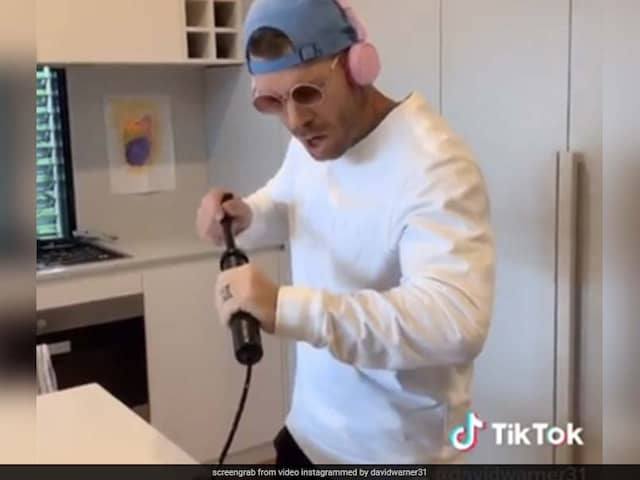 """Youve Officially Lost It"": Mitchell Johnson Trolls David Warner For TikTok Videos"