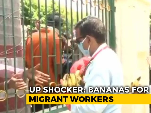 Video : On Camera, Migrant Workers Jostle For Bananas At UP's Prayagraj