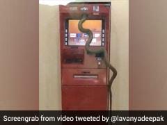 ATM जाएं तो थोड़ा संभल के: अचानक से निकला सांप, लाइन में खड़े लोग देखकर हुए हैरान- देखें Video