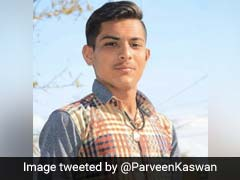 "Jodhpur Teen Fights Off Armed Poachers. ""Hero,"" Says Twitter"