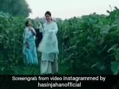 मोहम्मद शमी की वाइफ हसीन जहां ने शेयर किया नया वीडियो, सब्जियां तोड़ती दिखी, लोगों ने फिर किया ट्रोल, देखें Video