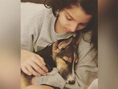 Farhan Akhtar Loves This Pic Of Daughter Akira And Pet Dog Tyson