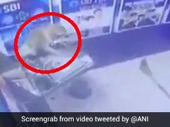 Caught On Camera: Monkey Breaks Into ATM In Delhi, Trashes It