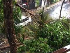 In A Week Of Heavy Rain In Bengaluru, 1 Dead, Trees Uprooted, Power Cuts