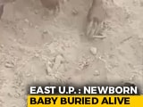 Video : Faint Cries Led To Baby Boy Found Buried In UP, Foot Was Sticking Out