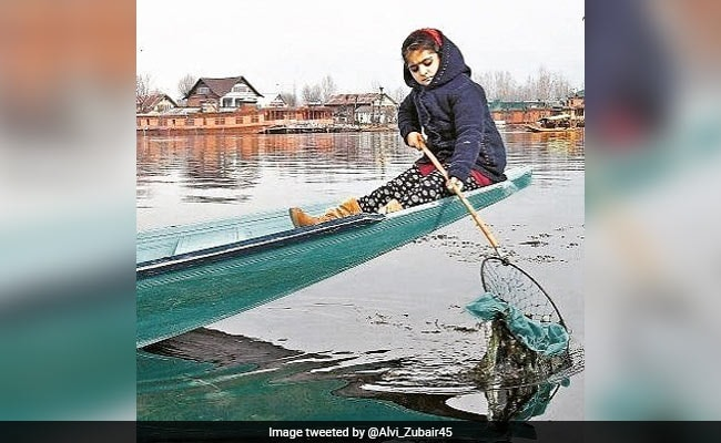 Story Of 7-Year-Old Cleaning Dal Lake Since 2 Years, Now Part Of Hyderabad School Books