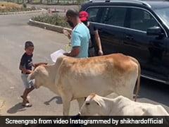 "Watch: Shikhar Dhawan Feeds ""Hungry Animals"" With Family, Harbhajan Singh, Kuldeep Yadav Applaud Batsman"