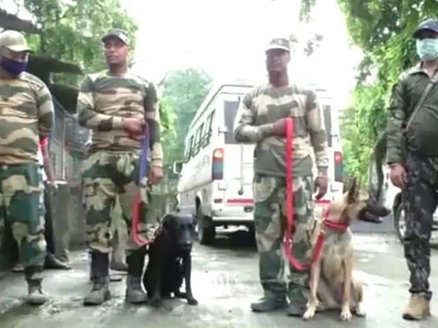 Video : Bengal Recruits 2 Canines To Crack Down On Poaching In COVID-19 Times