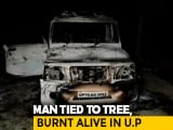 Video : UP Man Dragged Out Of Home At Night, Tied To Tree, Burnt Alive