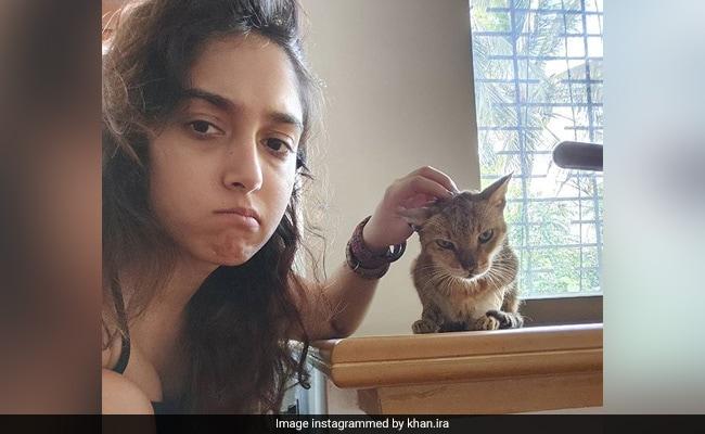 Aamir Khan's Daughter Ira Khan Shares Adorable Pics With A 'Grumpy Cat'