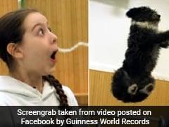कुत्ते ने हवा में उड़कर किया ऐसा स्टंट, देख खुला रह गया लड़की का मुंह... देखें Viral Video