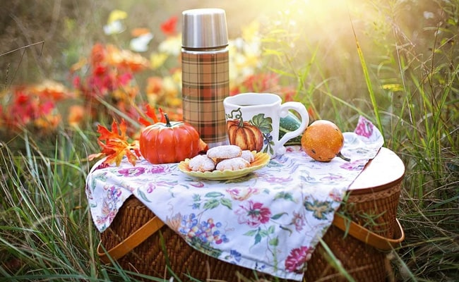 International Picnic Day 2020: Think Out Of The 'Basket' And Enjoy The Day