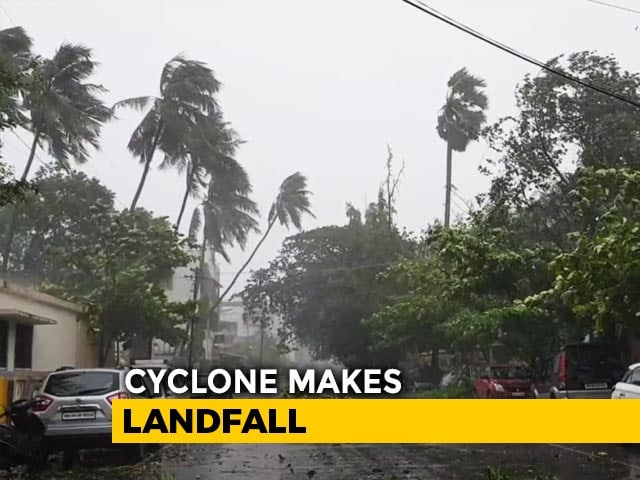 Video : Cyclone Impact Video: Strong Winds, Rain Pound Alibaug, Trees Uprooted
