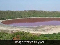 Team Of Scientists To Examine Why Maharashtra's Lonar Lake Has Turned Pink
