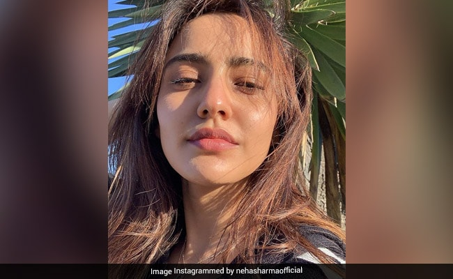 Neha Sharma Is '50 Percent Savage' In This Pic. The Other 50 Percent Is...