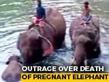 "Video : ""3 Suspects,"" Says Kerala Chief Minister On Killing Of Pregnant Elephant"