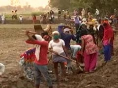 No Work For Them Under MGNREGA, UP Villagers Start Cleaning Canal For Free