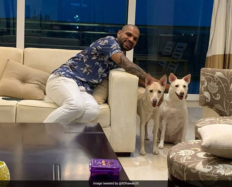 "Shikhar Dhawan Adopts Two ""Cuties"", Shares Pictures Of ""New Family Members"""