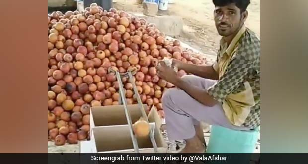 Man's Simple Hack To Sort Fruits By Size Garners Praise For Its Ingenuity