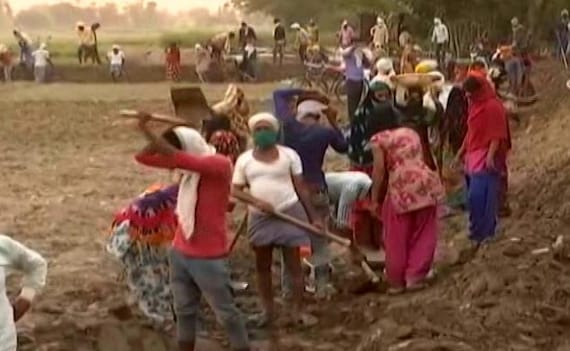 Jobless UP Graduates Who Earned 'Decent Money' Now Look For MGNREGA Work