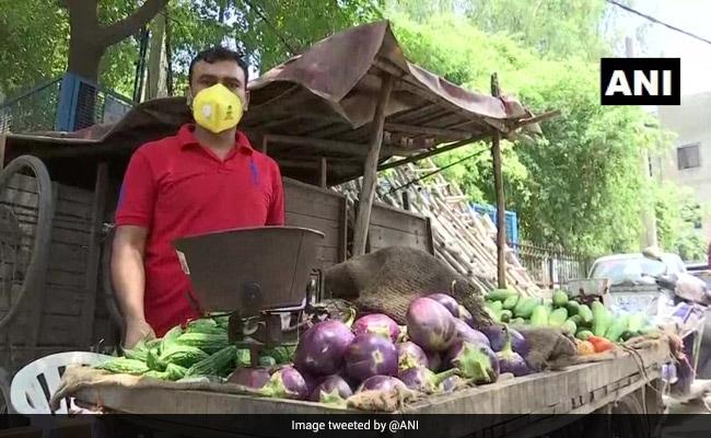 कोविड-19 के कारण दो माह से कोई आमदनी नहीं, सब्जी बेचने को मजबूर है दिल्ली का टीचर