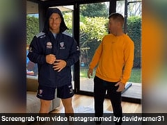 David Warner's Latest TikTok Video Features Dhanush Hit Track. Watch