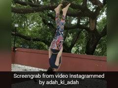 अदा शर्मा ने पेड़ में बांधी रस्सी, फिर लटककर यूं दिखाए करतब- देखें वायरल Video
