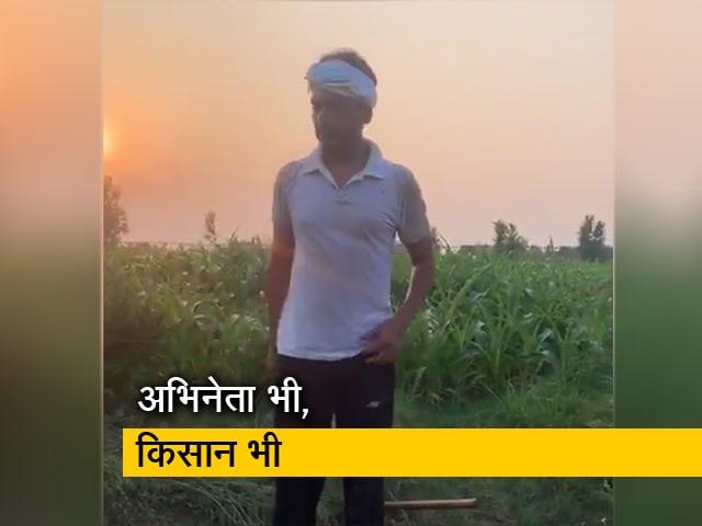 Videos : खेतों में पसीना बहा रहे हैं फिल्म स्टार नवाजुद्दीन सिद्दीकी