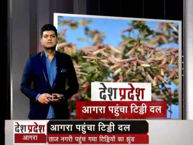 Video : ताजनगरी पहुंच गया टिड्डियों का दल, ड्रोन से केमिकल का छिड़काव