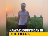 "Video : ""Done For The Day"": Nawazuddin Siddiqui Is Working In The Fields Of His Hometown"