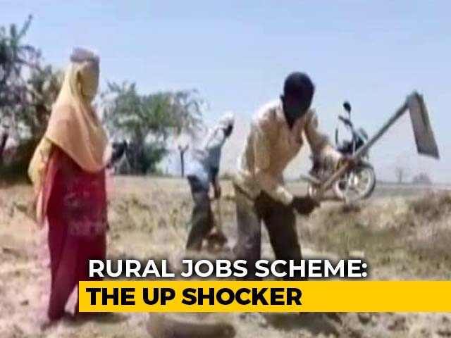 Video: Jobless UP Graduates Who Earned 'Decent Money' Now Look For MGNREGA Work